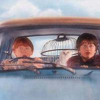 Ron & Harry Potter